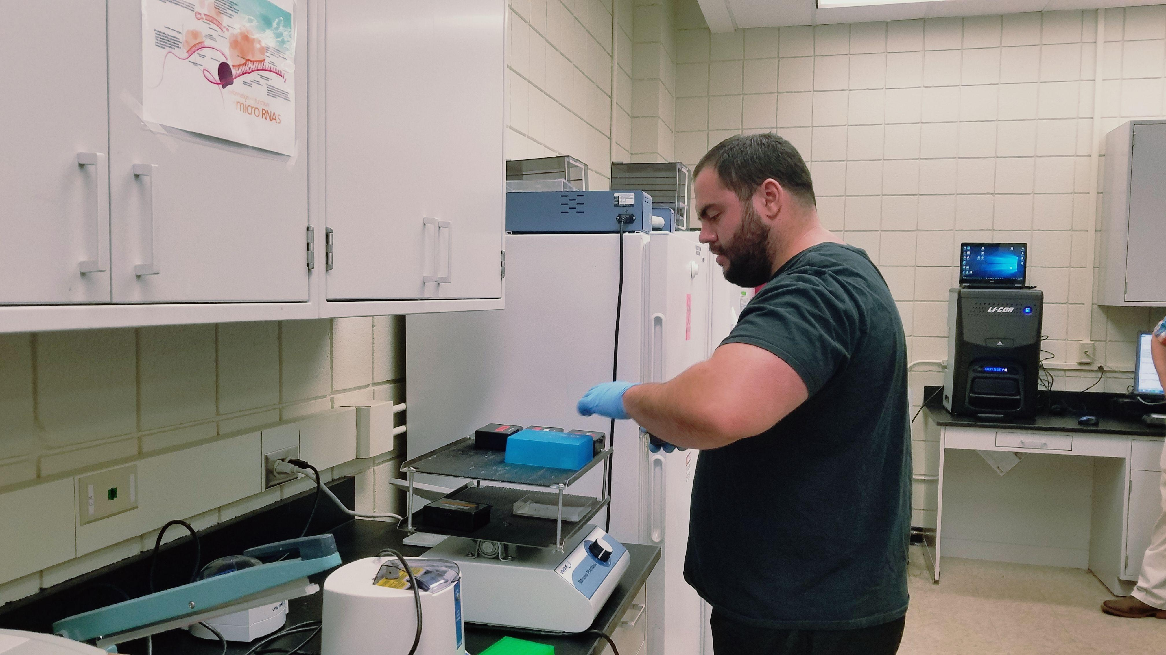 PhD student working in molecular physiology lab